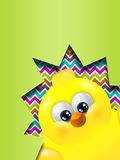 Easter chick hatched out from egg with place for text. Easter cartoon chick hatched out from egg with place for text Royalty Free Stock Images