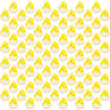 Easter chick hatching pattern isolated Stock Images