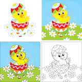Easter Chick. Little yellow chick looking out of a colorful Easter egg Stock Images