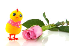 Easter chick with rose Royalty Free Stock Image