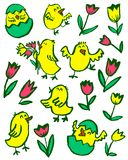 Easter chick set. Floral collection with spring chicken and tuli. Ps. Vector illustration in doodle children style Stock Illustration