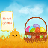 Easter chick and sign with basket and eggs background Royalty Free Stock Photo