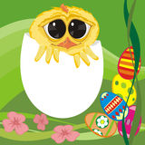 Easter chick - wishes Royalty Free Stock Photo