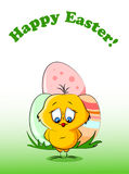 Easter chicken, background  vector Stock Image