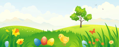 Easter chicken banner. Banner with an Easter scenery Stock Image