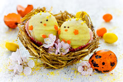 Easter chicken candy cake pops in nest - funny idea for Easter Royalty Free Stock Photo