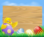 Easter chicken and chocolate painted eggs Stock Image