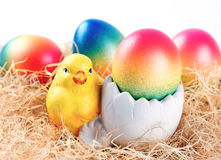 Easter chicken and colorful easter eggs Royalty Free Stock Photos