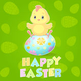 Easter chicken. A cute chicken on Easter green background Stock Photo