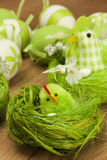 Easter chicken with decoration Royalty Free Stock Image