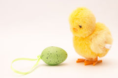Easter chicken and egg Royalty Free Stock Image