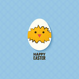 Easter chicken egg concept background Royalty Free Stock Photography