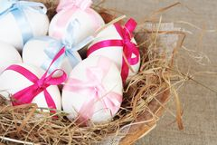 Easter Chicken Eggs with Bows in Nest Royalty Free Stock Photography