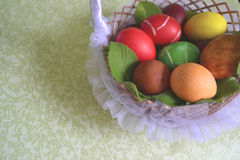 Easter chicken eggs royalty free stock photos