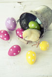 Easter chicken, eggs and decoration on white background Royalty Free Stock Images