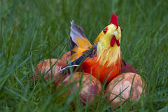 Easter chicken with eggs Stock Image