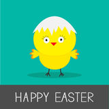 Easter chicken and eggshell. Flat design style. Ca Royalty Free Stock Images