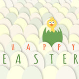 Easter chicken greeting card Royalty Free Stock Photography