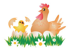 Easter Chicken, Hen  and eggs. Royalty Free Stock Photos