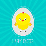Easter chicken  inside egg.  Sunburst . Card. Royalty Free Stock Images