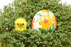 Easter chicken and painted egg on fresh green watercress Stock Photos