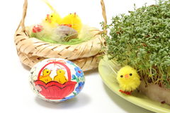 Easter chicken and painted egg with green watercress Royalty Free Stock Photos