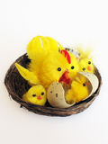 Easter chicken toy. Toy chicken decoration for Easter Stock Photography
