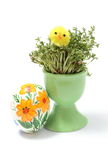 Easter chicken on watercress in green cup and painted egg Stock Images