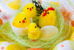 Easter chickens. Small yellow toy chickens in nest and easter eggs around Royalty Free Stock Photography