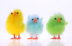 Easter chickens Royalty Free Stock Photos