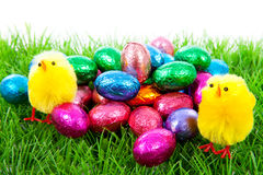 Easter chickens and colorful eggs on grass Royalty Free Stock Images