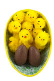 Easter chickens in easter egg Stock Photo