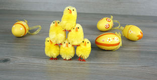 Easter chickens and eggs Royalty Free Stock Photos