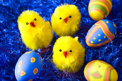 Easter chickens and eggs. On blue decoration background Stock Photo