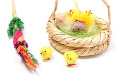 Easter chickens in wicker basket and colorful palm Royalty Free Stock Image