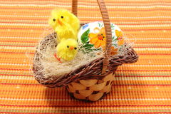 Easter chickens in wicker basket and painted egg Royalty Free Stock Photography