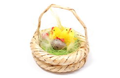 Easter chickens in wicker basket on white background Stock Photos