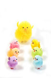 Easter chicks. Multi colored synthetic chicks and big chick isolated on white background Stock Photography
