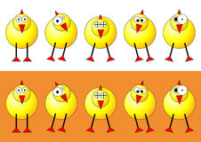 Easter chicks. With different faces and positions over white and orange background Royalty Free Stock Images