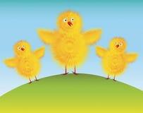 Easter chicks. Cartoon easter chicks theme illustration royalty free illustration