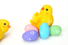 Easter Chicks Royalty Free Stock Image