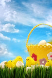 Easter chicks against sky background Stock Photos