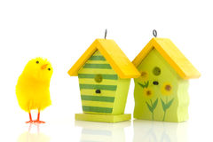 Easter chicks with bird houses Stock Image