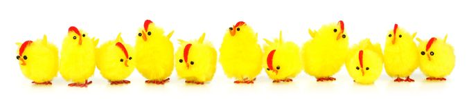Easter chicks border Stock Photography
