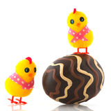Easter chicks with egg Royalty Free Stock Photo