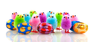 Easter chicks with eggs Stock Photography