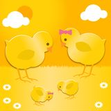 Easter chicks family Stock Photos