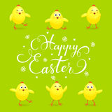 Easter chicks on green background Stock Photography