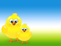 Easter chicks over spring background with place for text Royalty Free Stock Image