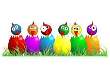 Easter chicks over white. Easter chicks with different faces colors and positions over white Royalty Free Stock Photography